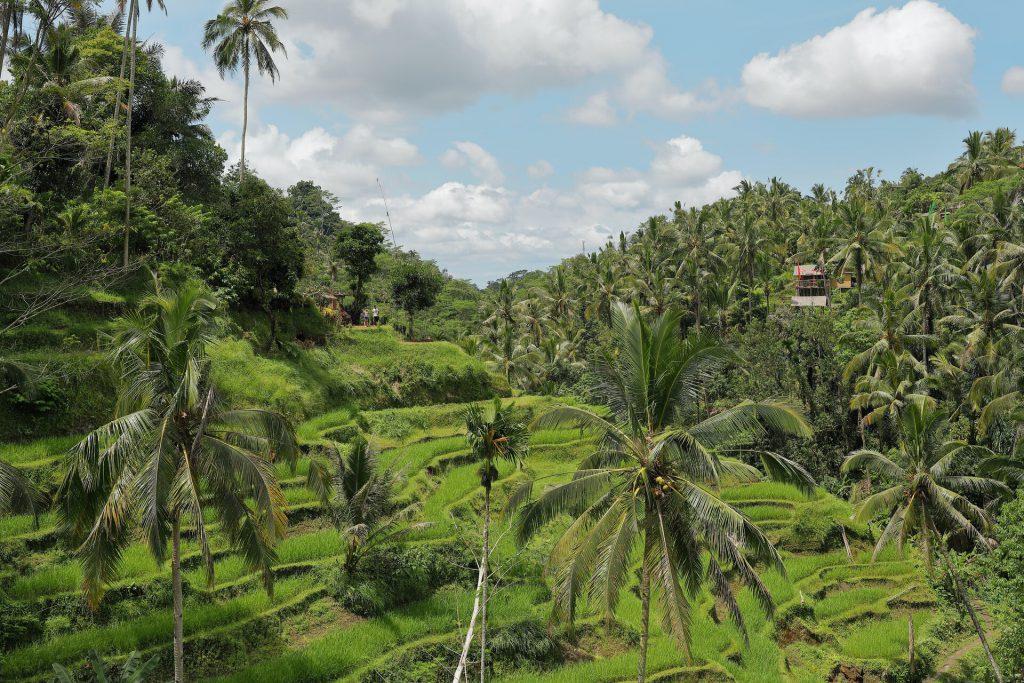 Eilandhoppen in Indonesië